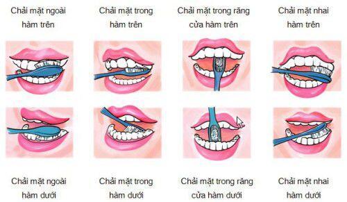 các vấn đề chăm sóc răng miệng cơ bản nhất