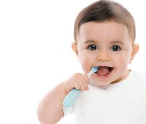 Công dụng của Răng sữa