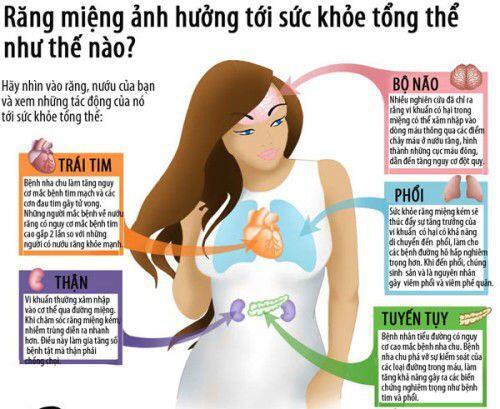 Nha chu ảnh hưởng tới nhiều bộ phận cơ thể